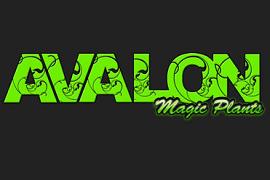 Avalon Magic Plants Discount Codes