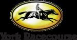 York Racecourse Vouchers Promo Codes 2019