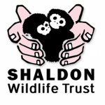 Shaldon Zoo Coupons