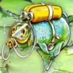 Aquaplancton Discount Codes